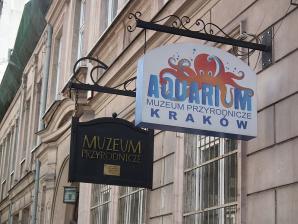 Museum Of Natural History, Krakow