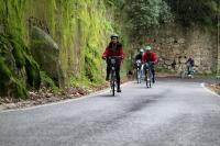 Sintra Cascais Tour