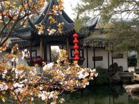 Best of Suzhou Day Trip