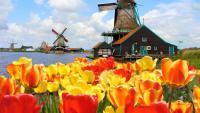 Amsterdam Private Tour