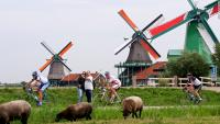 Typical Dutch - Amsterdam and windmills