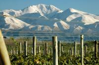 Wineries By Mountain Bike