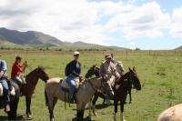 Horse Riding in Potrerillos Half Day Tour