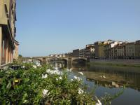 All Florence in one day Guided City Tour with Accademia and Uffizi Galleries