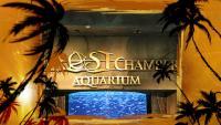 Atlantis Aquaventure and Lost Chamber