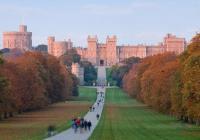 Hampton Court and Windsor Castle
