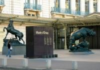 PARIS AND ORSAY MUSEUM PRIVATE TOUR