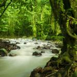 Best Monsoon Destinations in Asia