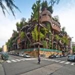 6 Amazing Houses Built Around Trees