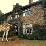 50 Most Unusual Places To Stay In The World | Part 3