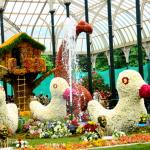 Rejuvenate Yourself with Fun things to do in Lal Bagh, Bangalore