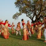 Festivals Celebrated in India in January