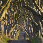9 Exciting Short Road Trips In UK