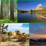 8 Must Visit National Parks In California