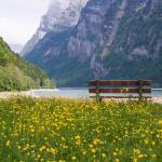 Places To Visit In Switzerland For Honeymoon in 2018