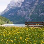 15 Unsual Things To Know About Switzerland