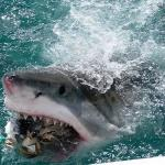11 Most Dangerous Beaches in the World