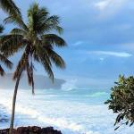 Best Beaches in Hawaii - The Best of Each Island