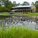 Hunter Wetlands Centre