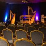 Luc Vanlaere Harp Concert