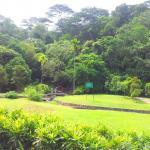 Lembah Kiara Recreational Park