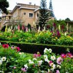 Bao Dai Villas