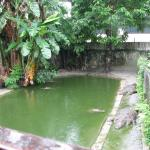 Amo Chhu Crocodile Breeding Centre