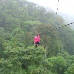 Rain Forest Aerial Trams