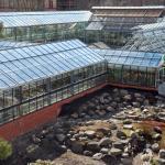 Botanischer Garten Der Universitat Heidelberg