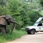 Vula Private Day Tours