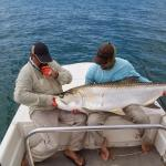 Light Tackle Adventure Tarpon Fishing