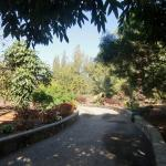 El Parque Botanico De Maspalomas