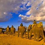 Sunrise Elephant Back Safari