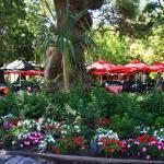 Companys Gardens