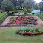 Hakgala Botanic Gardens