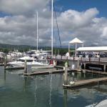 The Reef Marina