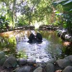La Concepcion- Jardin Botanico-historico De Malaga