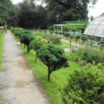 Lloyds Botanical Garden
