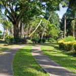 Thurston Gardens
