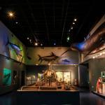 Nova Scotia Museum Of Natural History