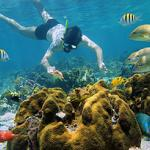 Culebra Island Adventure