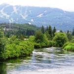 River Of Golden Dreams Or Alta Creek