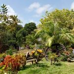 Genesis Nature Park
