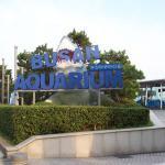 Sea Life Busan Aquarium