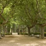 Parc De La Devesa