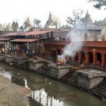 The Crematoria