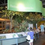 Florida Keys Eco Discovery Centre