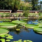Jardin Botanique Et Exotique Val Rahmeh