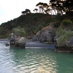 Cruising On Raglan Harbour