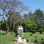 Limassol Municipal Gardens